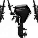 Motore Mercury 20 cv